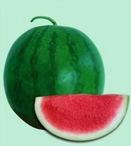 Watermelon-Seedless-Mega-Shikha