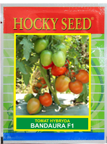 Tomat-Hybrida-Bandaura-F1