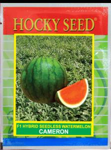 Watermelon-F1-Hybrid-CAMERON