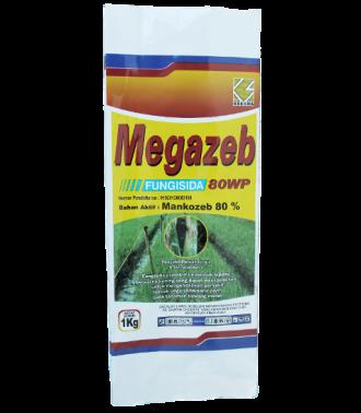 MEGAZEB