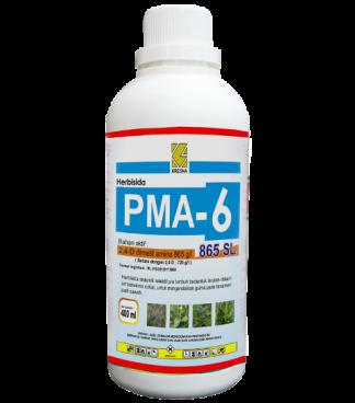 PMA 6