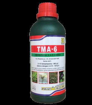 TMA 6